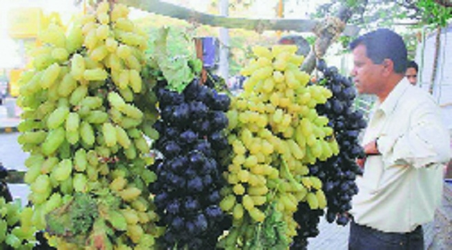 Grape prices_1