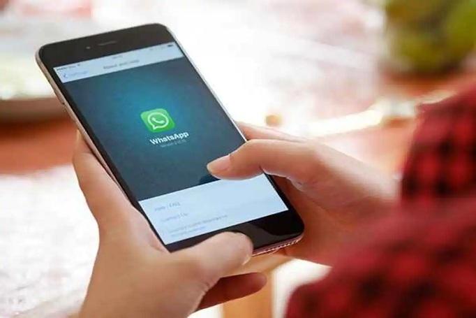 WhatsApp_1H x