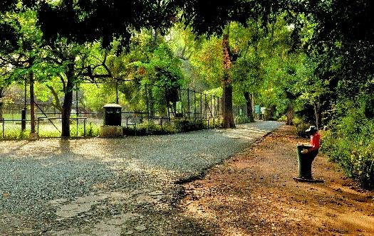 Maharajbagh zoo_1&n
