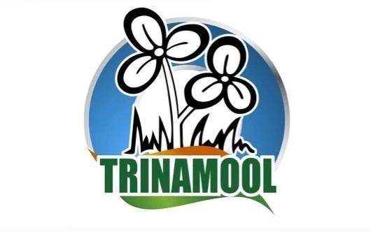 Trinamool_1H