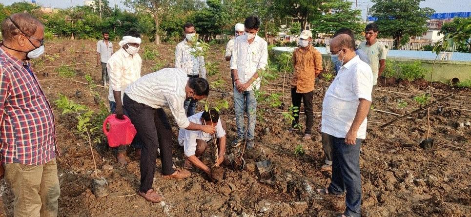 Sandeep G R planting_1&nb